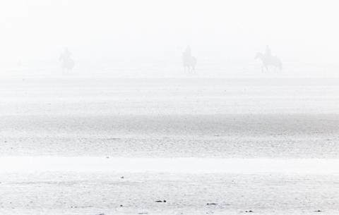 sea mist3