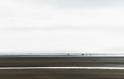 sea mist5