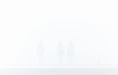 sea mist6