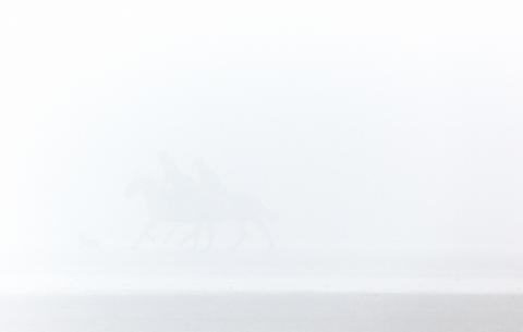 sea mist9